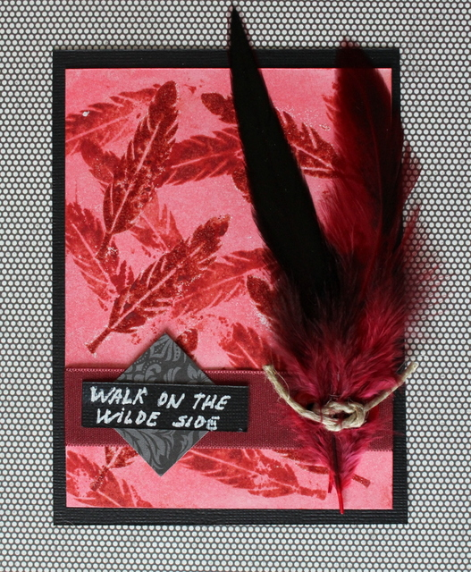 Plumas. Walk on the wilde side 01