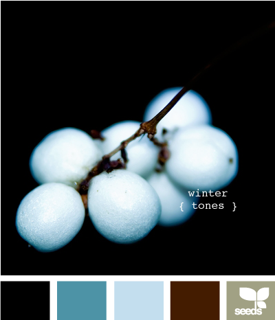 03 Marzo 2014 - WinterTones615