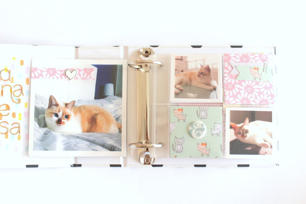 scrapbooking_mini_album_xeniacrafts-008