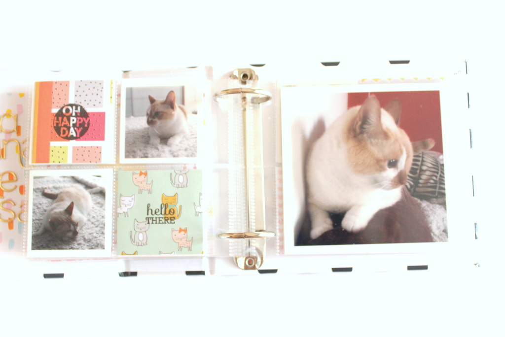 scrapbooking_mini_album_xeniacrafts-015